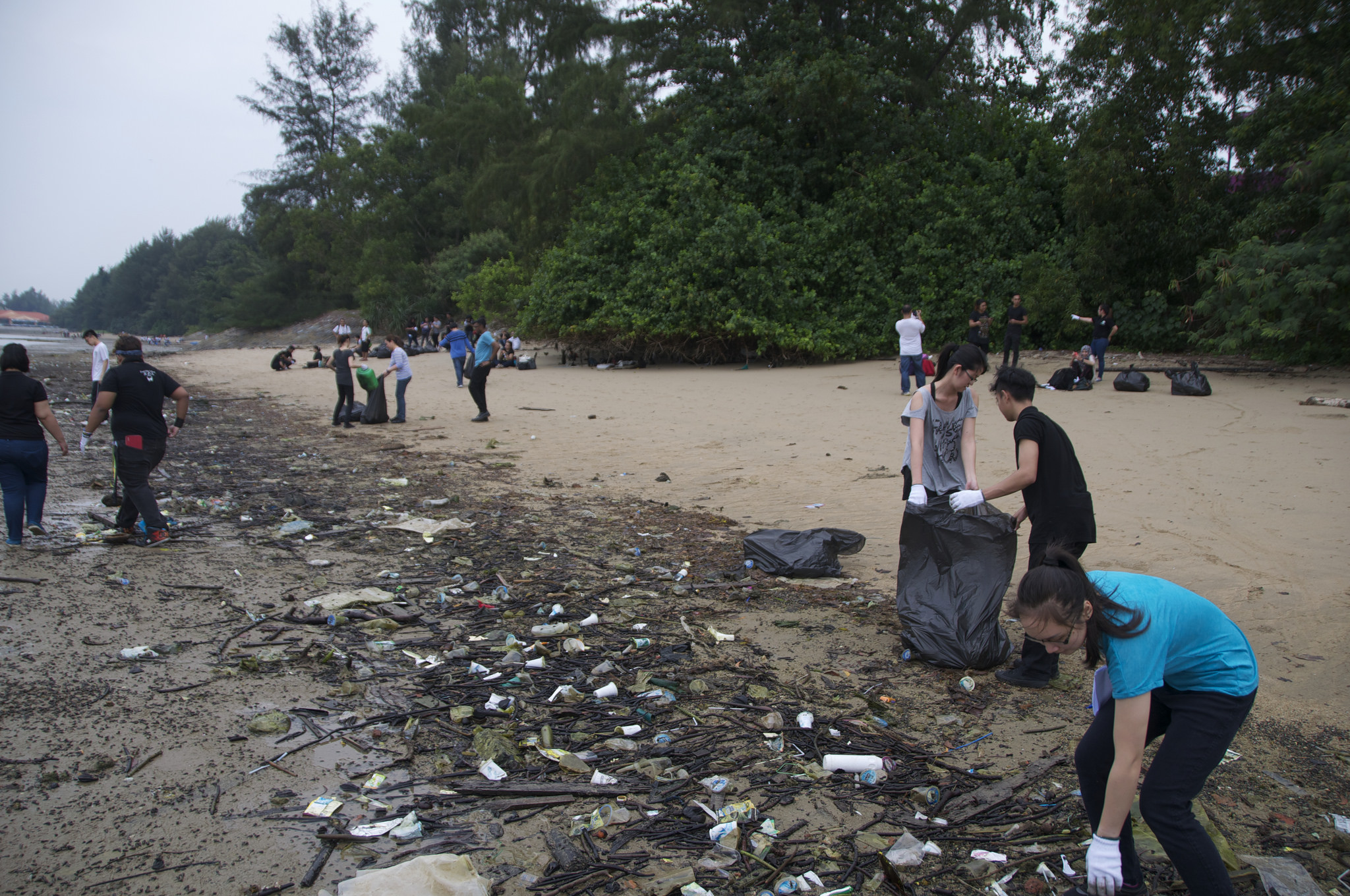 Singapore - Tanah Merah Beach - 2.19-before.jpg