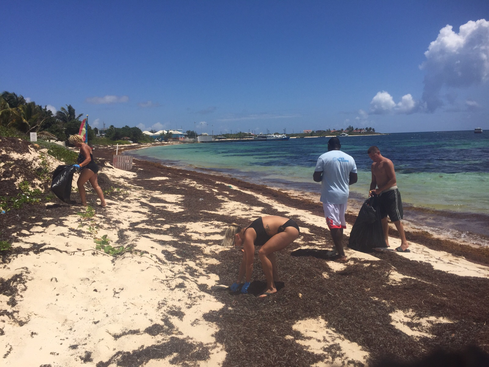 Anguilla - Dolphin Discovery - ICC2015 - 5.JPG