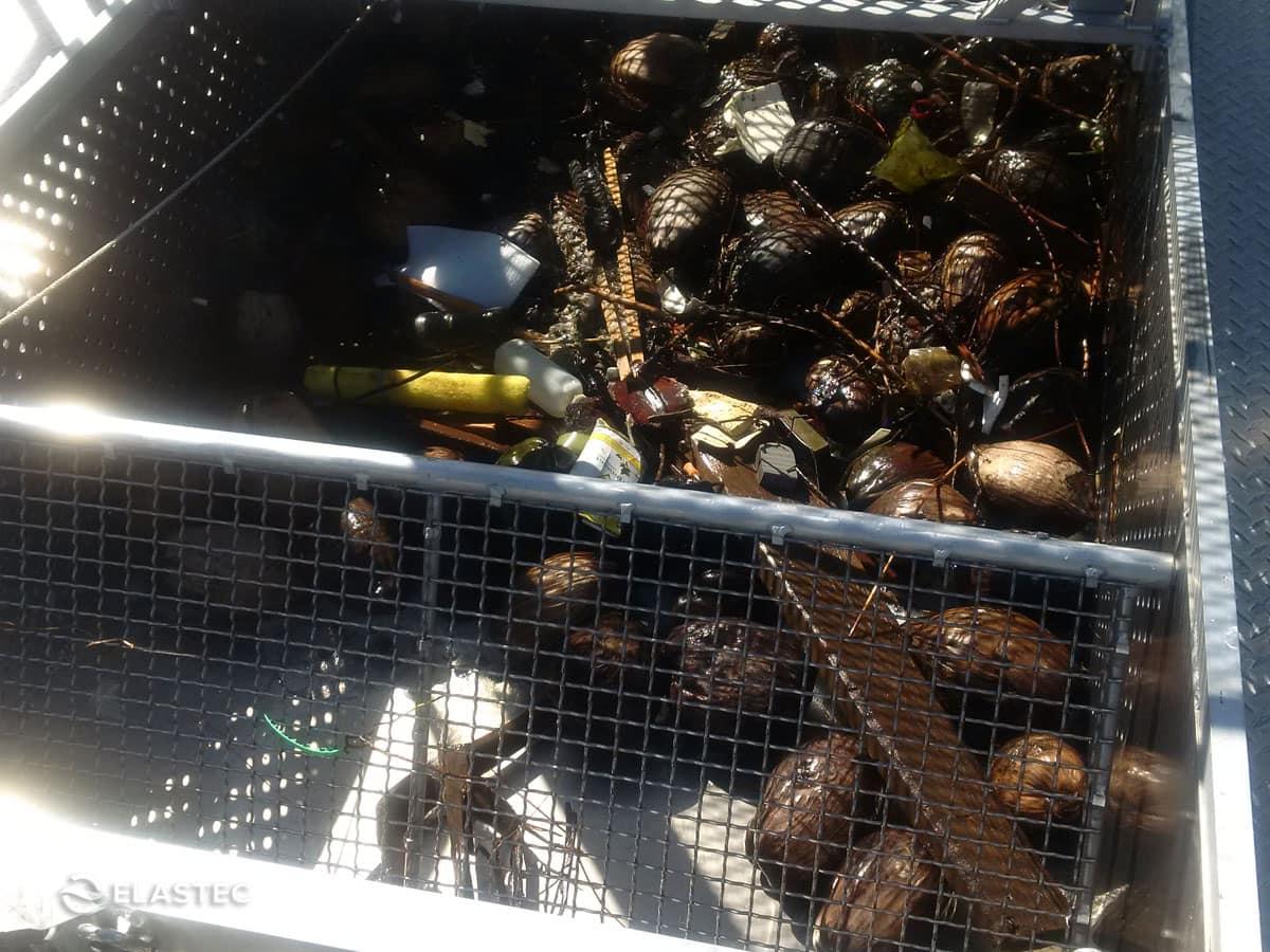 omni-catamaran-trash-collection.jpg