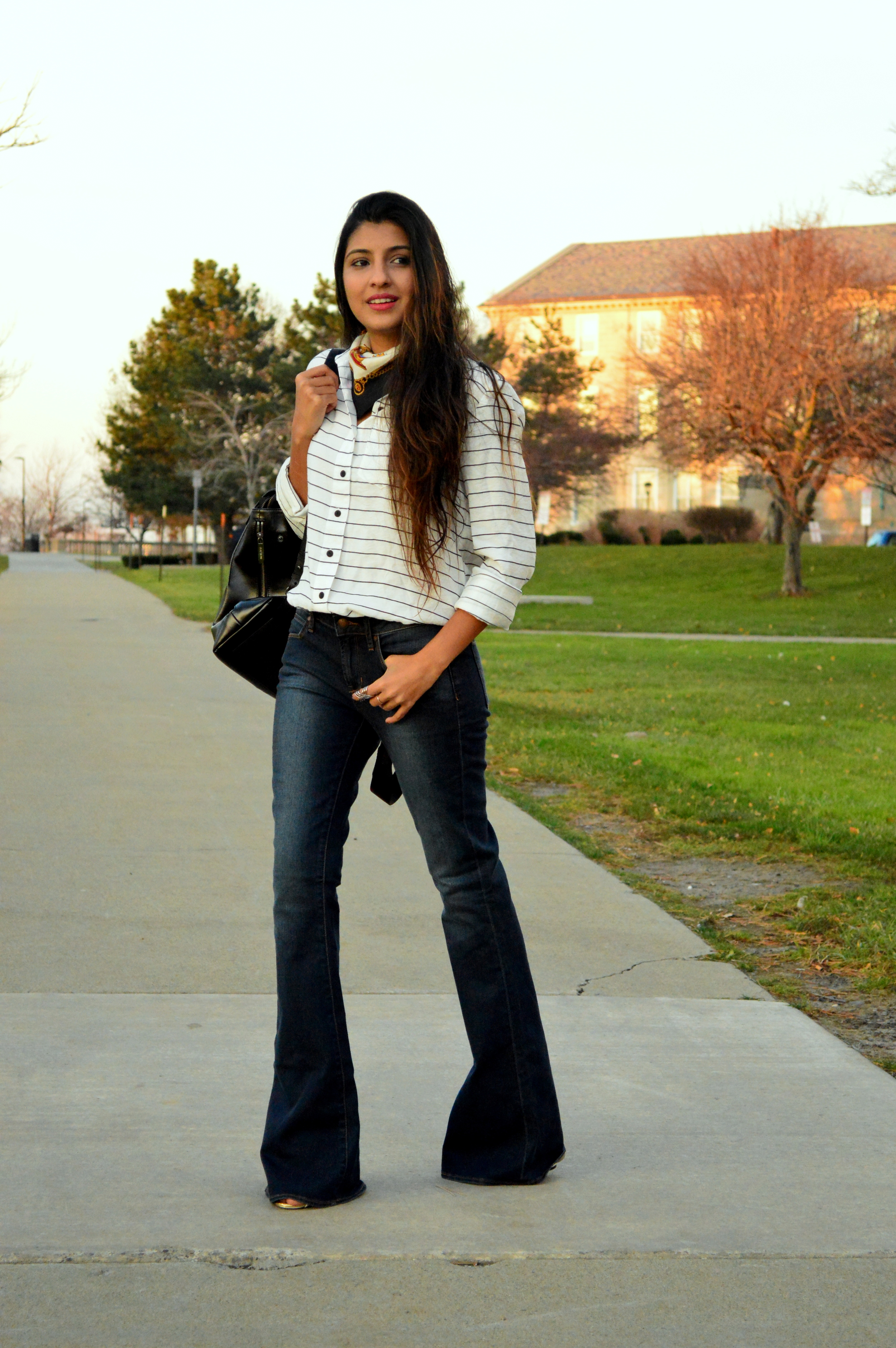 Stripes and Flares 3