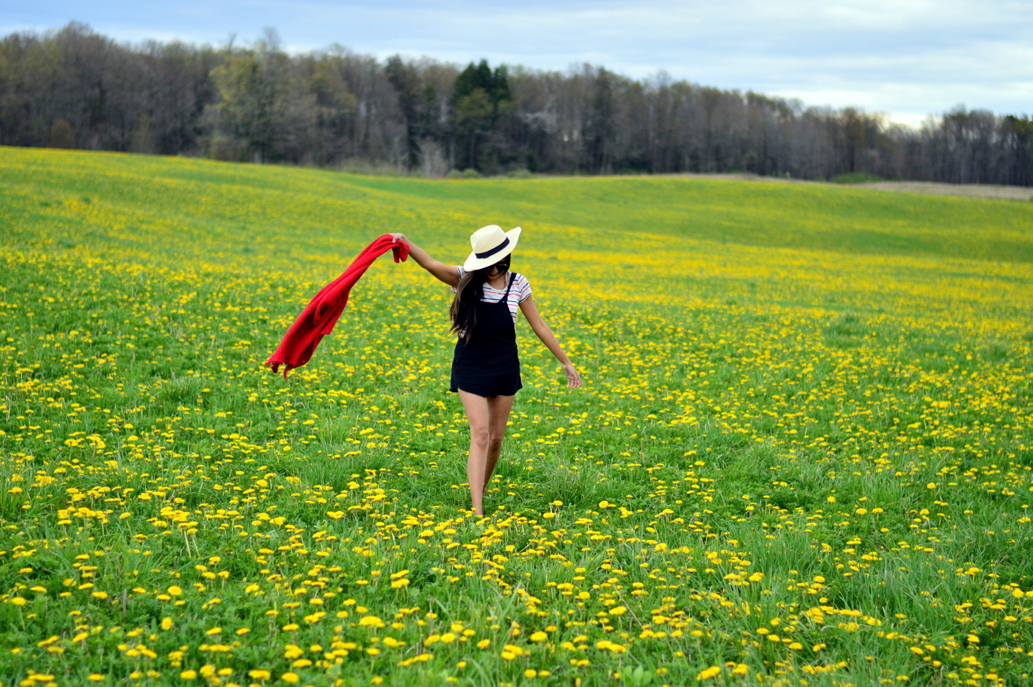 black-overalls-stripes-summer-casual-style-wildflower-fields 10