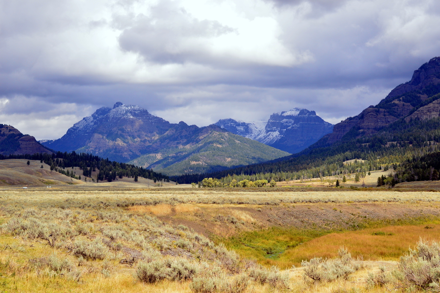 yellowstone-national-park-lamar-valley-travel-guide-blogger