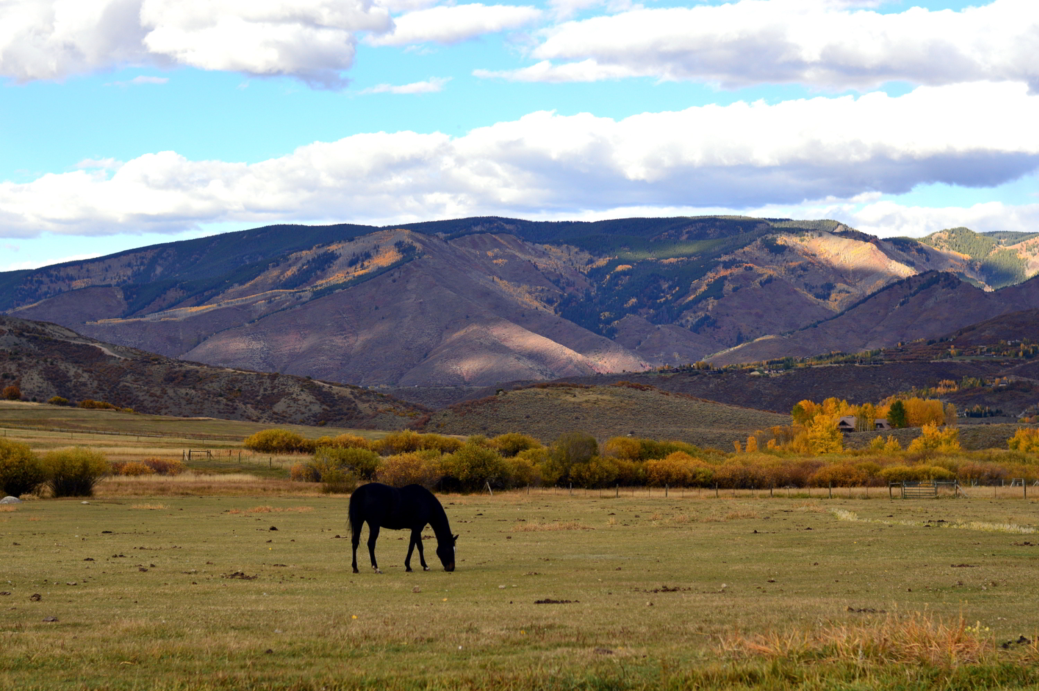 colorado-ashford-ghost-town-travel-fall-guide-blogger 1