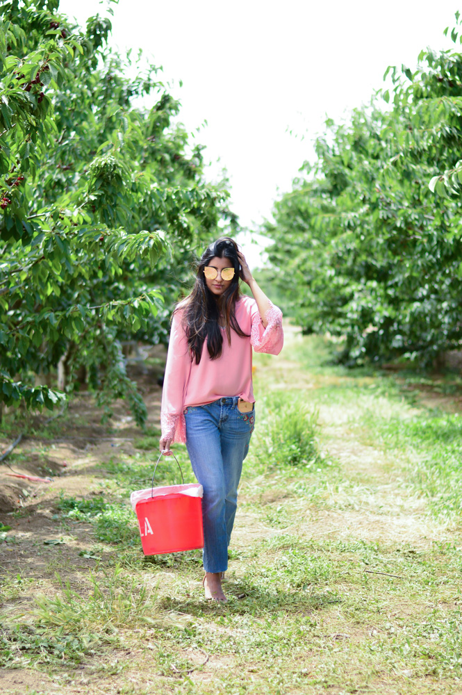 bell-sleeves-pink-blouse-embroidered-denim-cherry-picking-brentwood-california-blogger-outfit-travel 8