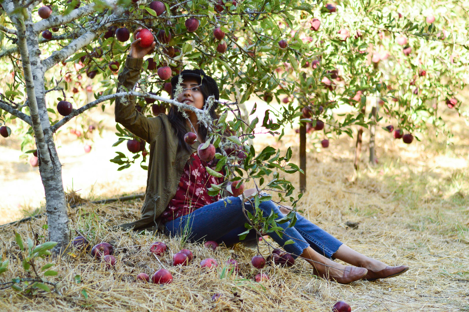 apple-picking-fall-florals-utility-jacket-california-style-fall-activities 7