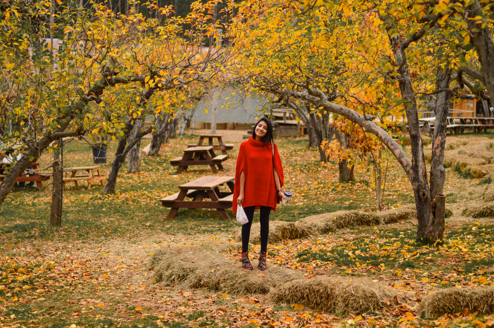 red-cape-sweater-rainbow-orchards-apple-hill-donuts 4