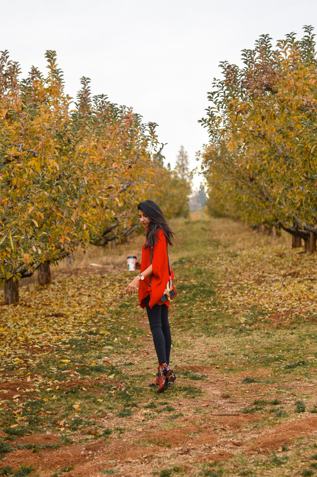 red-cape-sweater-rainbow-orchards-apple-hill 7