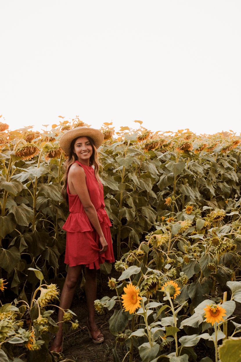 sunflower-fields-dixon-california-blogger-fashion 7