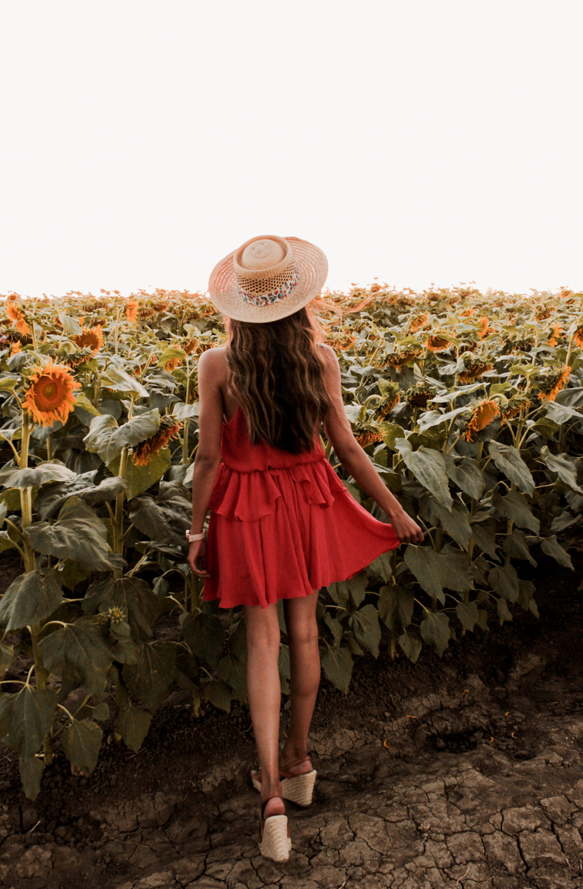 sunflower-fields-california-blogger-fashion-outfit 10