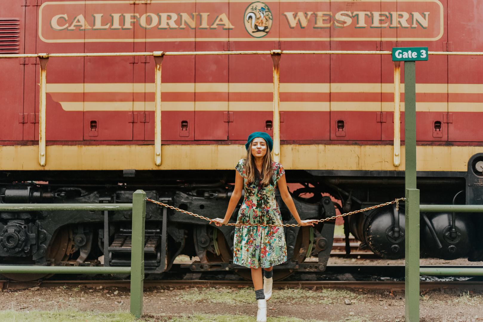 mendocino-staycation-skunk-train-travel 11