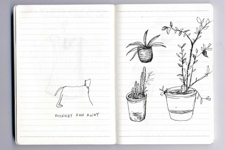 India_Sketches5.jpg