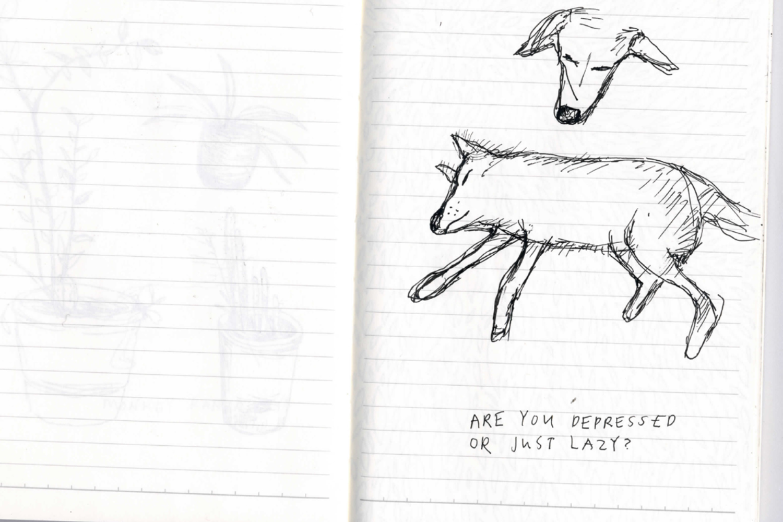 India_Sketches9.jpg