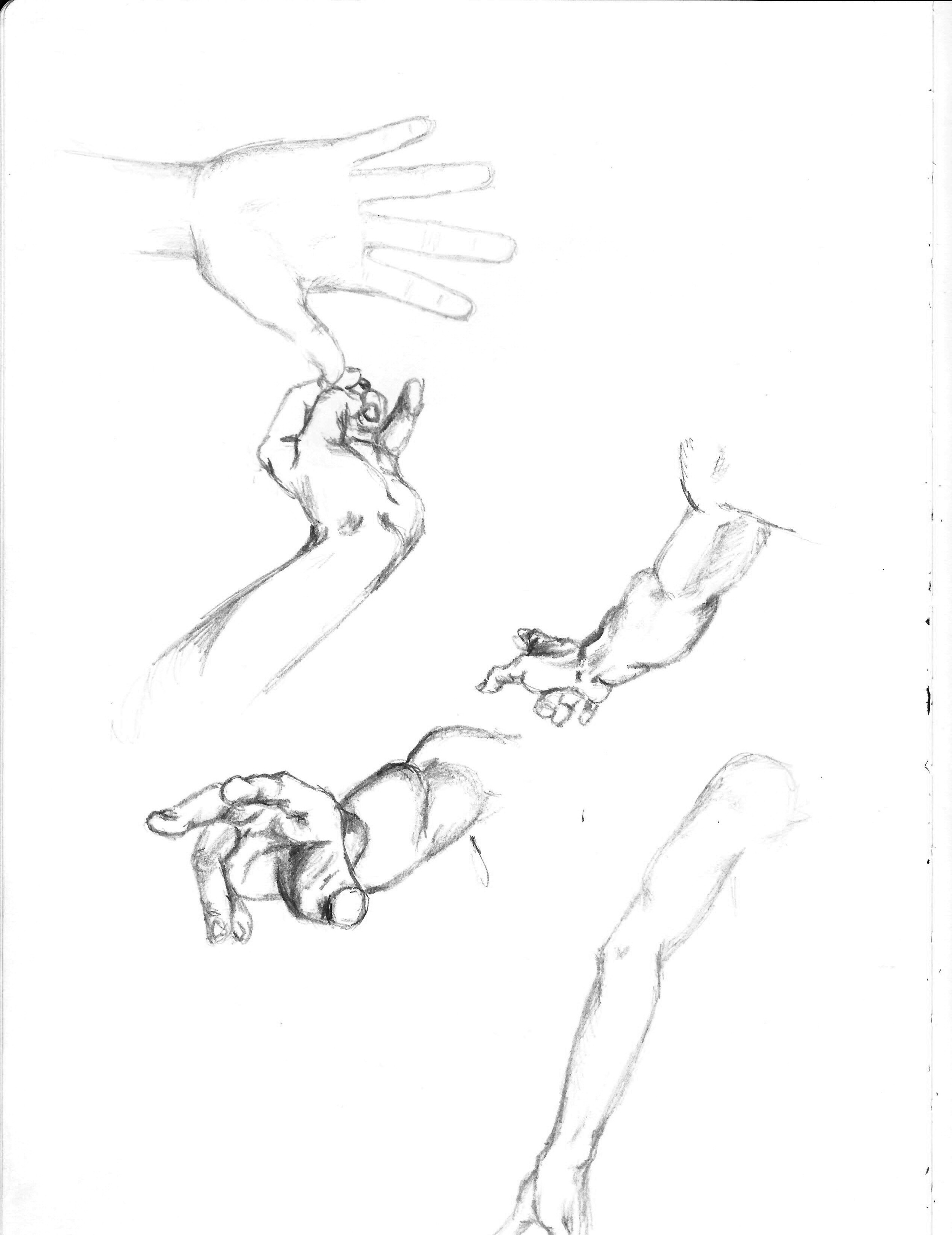 Hand and Arm Studies.jpg