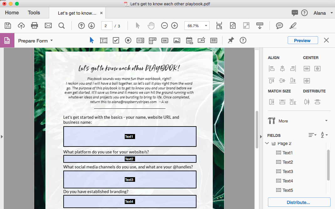 Fillable eBook - Step 4.png
