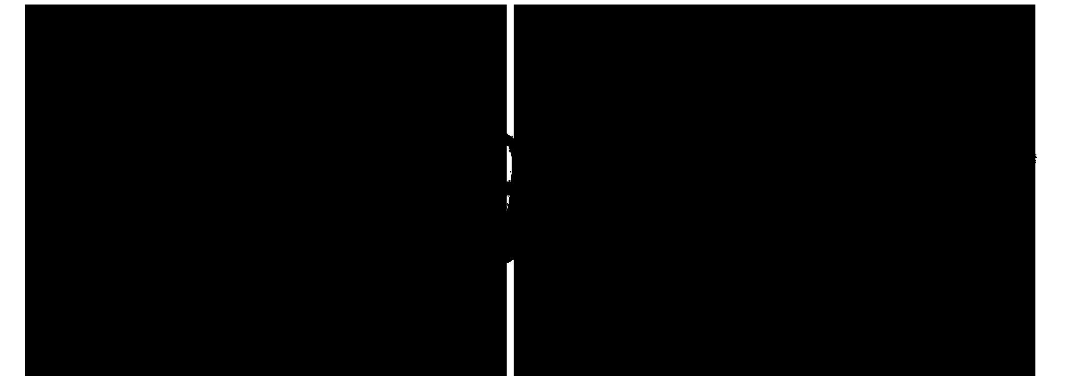 Raspberry Magazine Title Black Logo.png