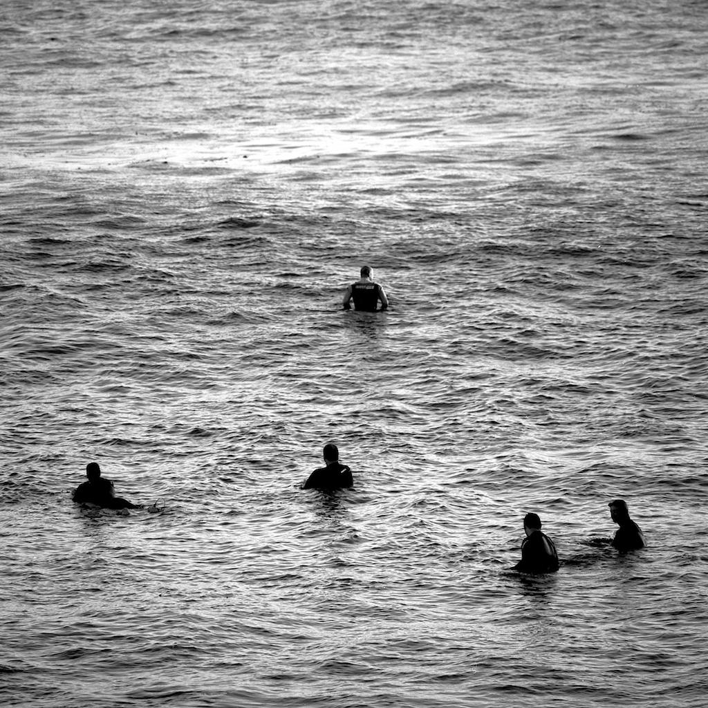 [#034811] The head of the pack, Santa Cruz, USA, 2013