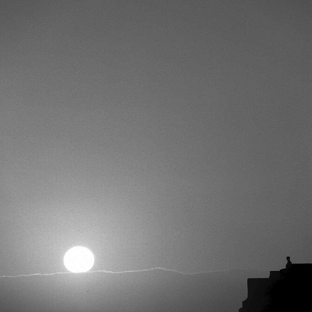 [#035005] Facing the sunset, Santa Cruz, USA, 2013