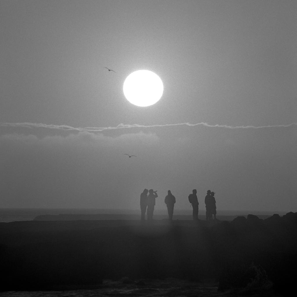 [#035004] After-surf buddies at the point, Santa Cruz, USA, 2013