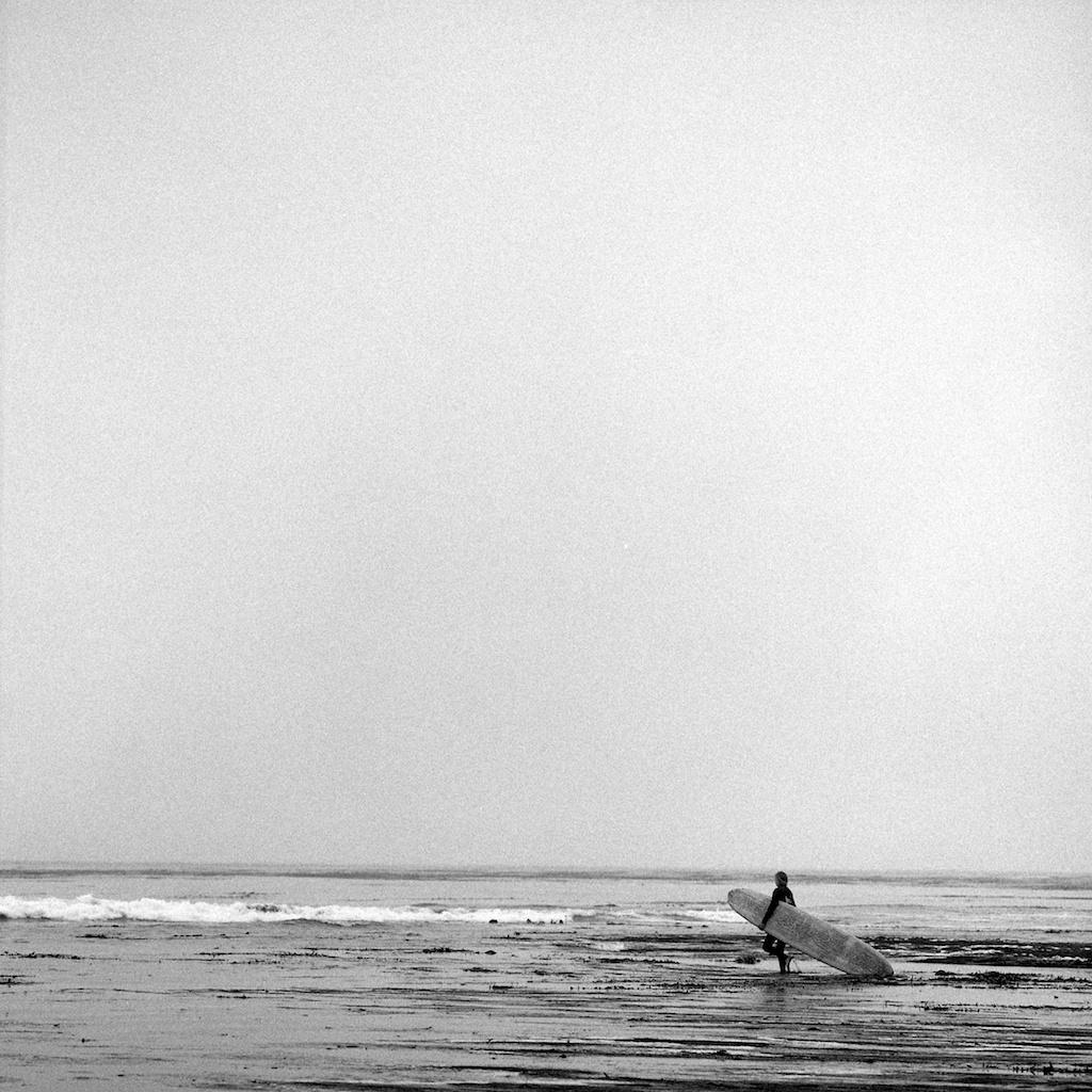 [#038811] Walking across the sea kelp, Santa Cruz, USA, 2013