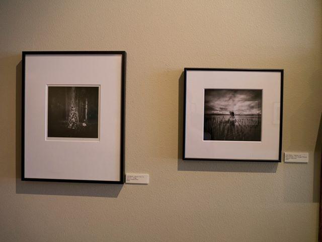 lightboax-gallery-plastic-fantastic-show-iv-display.jpg