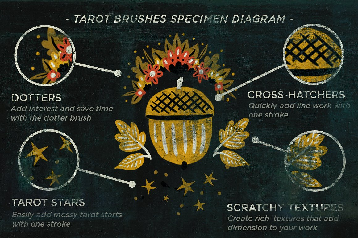 tarotbrushes_diagram-.jpg