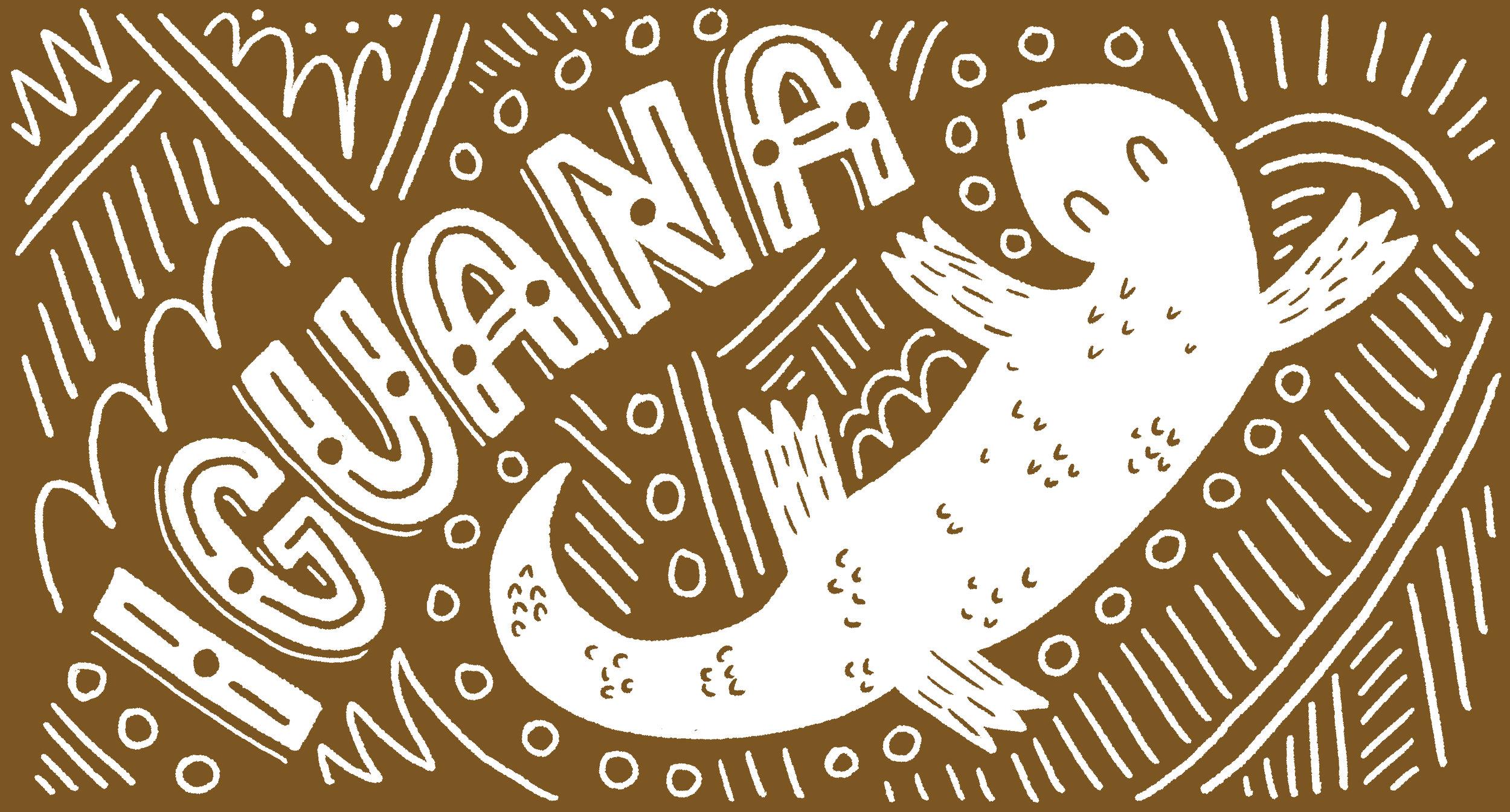 033-iguana.jpg