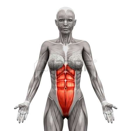 Common tightness in the abdomen can be found in both men and women who do a lot of core body work such as ball slams, pilates, planks, box jumps, etc and don't take the time to stretch the abdomen, so don't forget it in your daily stretches.