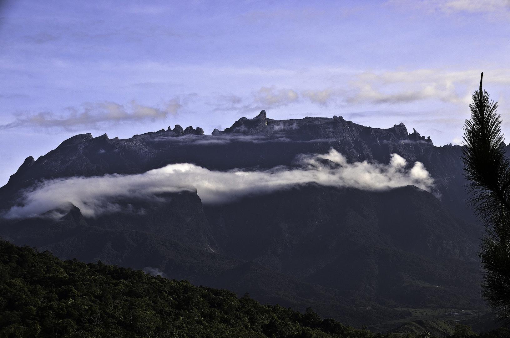 Borneo. Photo: Doreen Ambridge