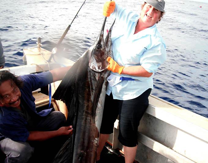 sailfish1_0.jpg