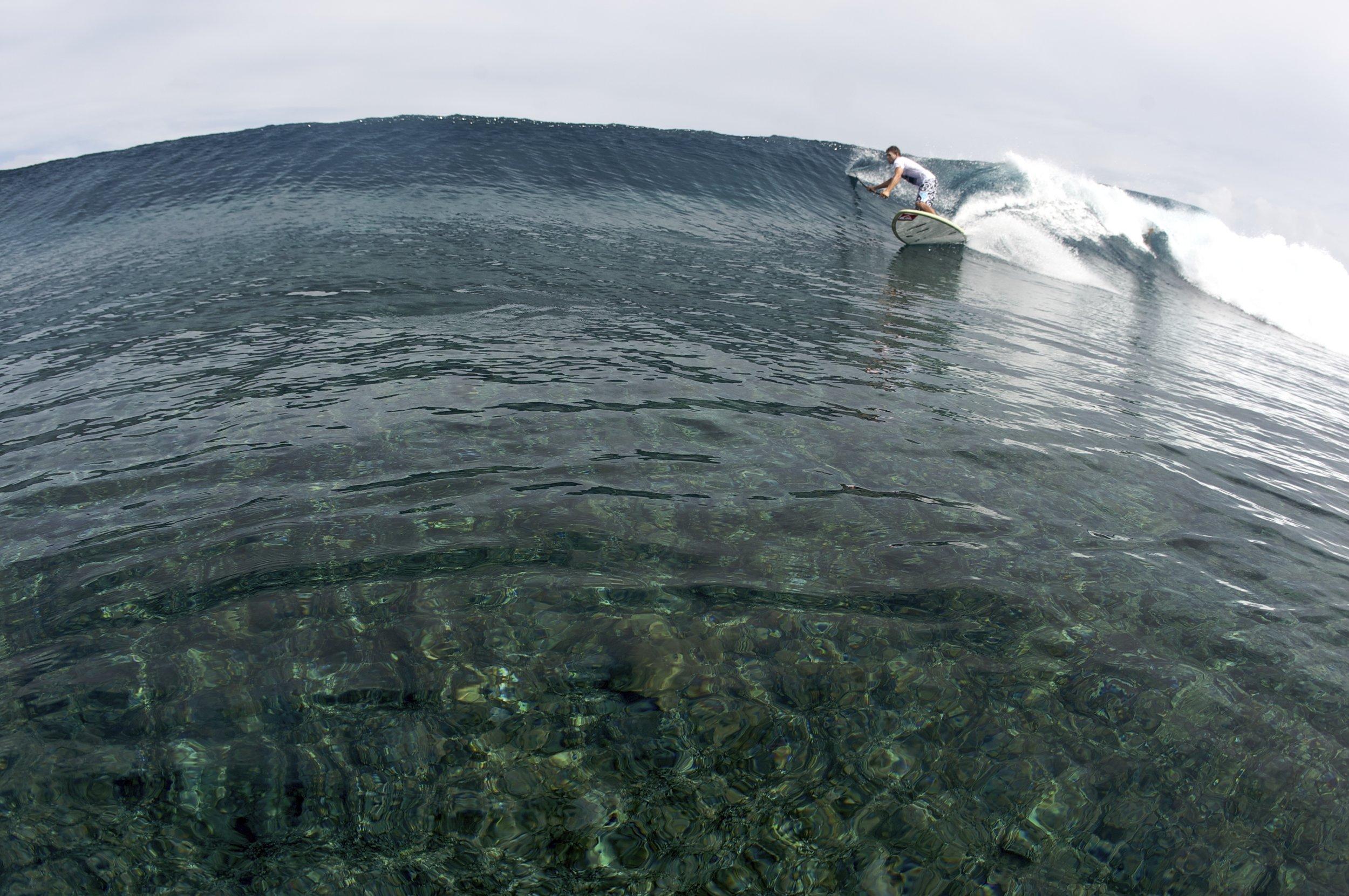 SURFING TRIPS -