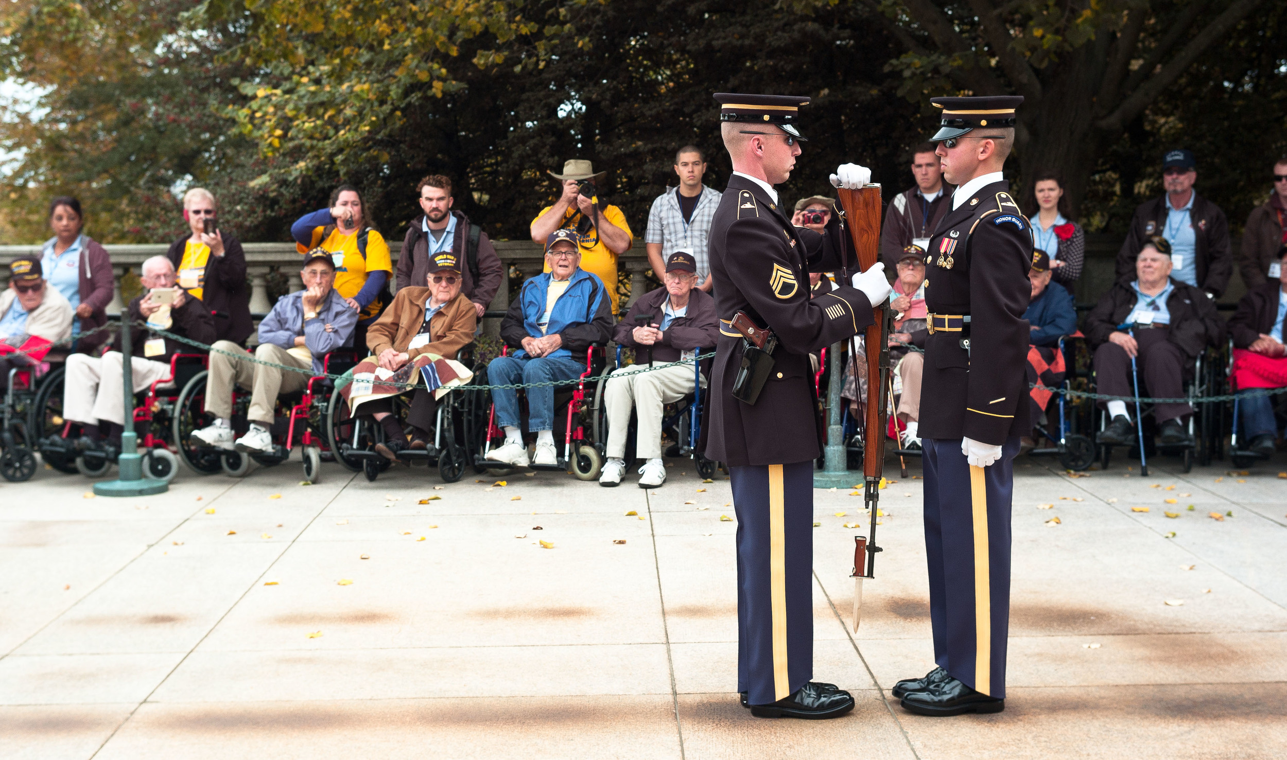 Changing of the Guard at the Tomb of the Unknown, Arlington