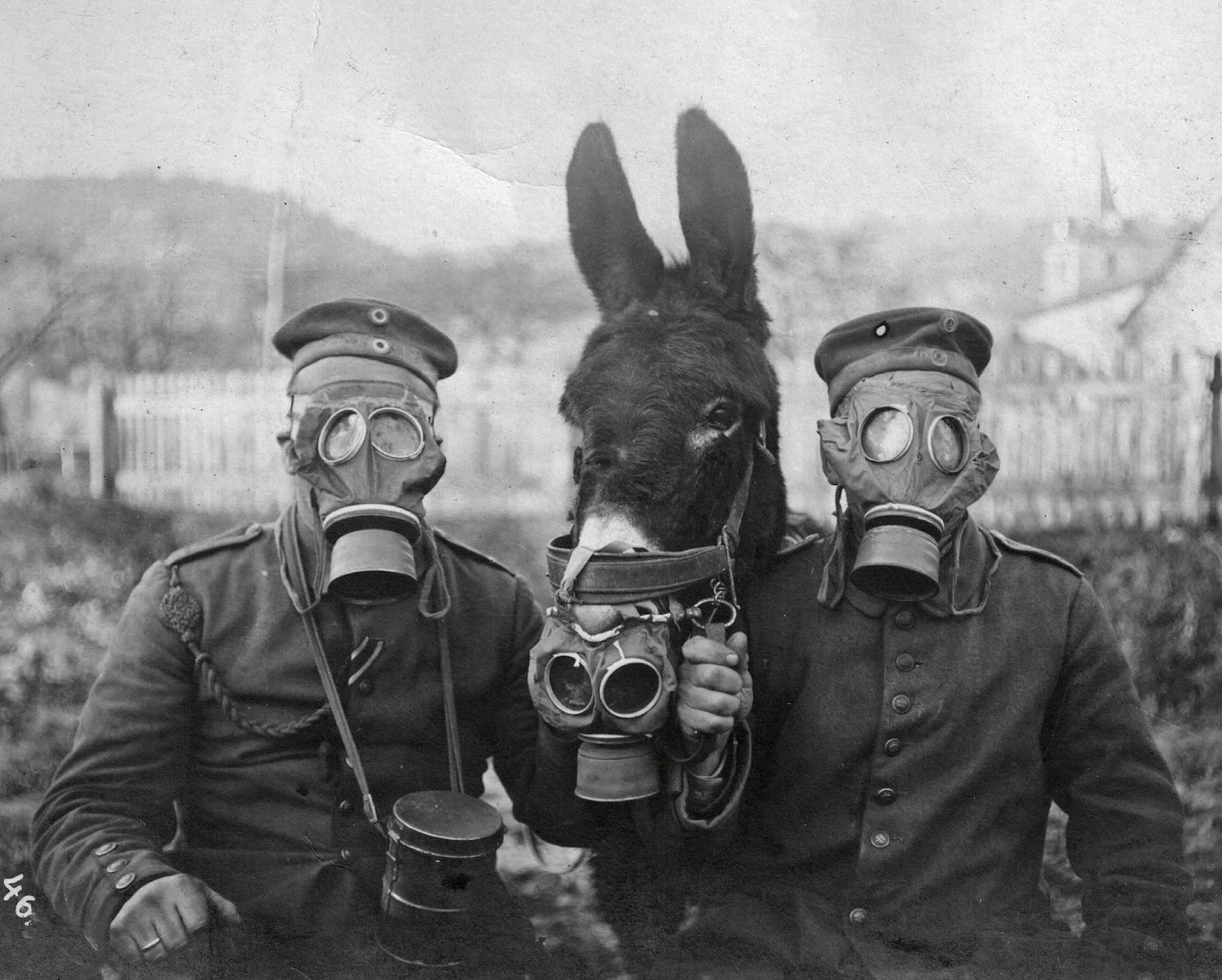 Two German soldiers, a donkey, and their gas-masks. 1917
