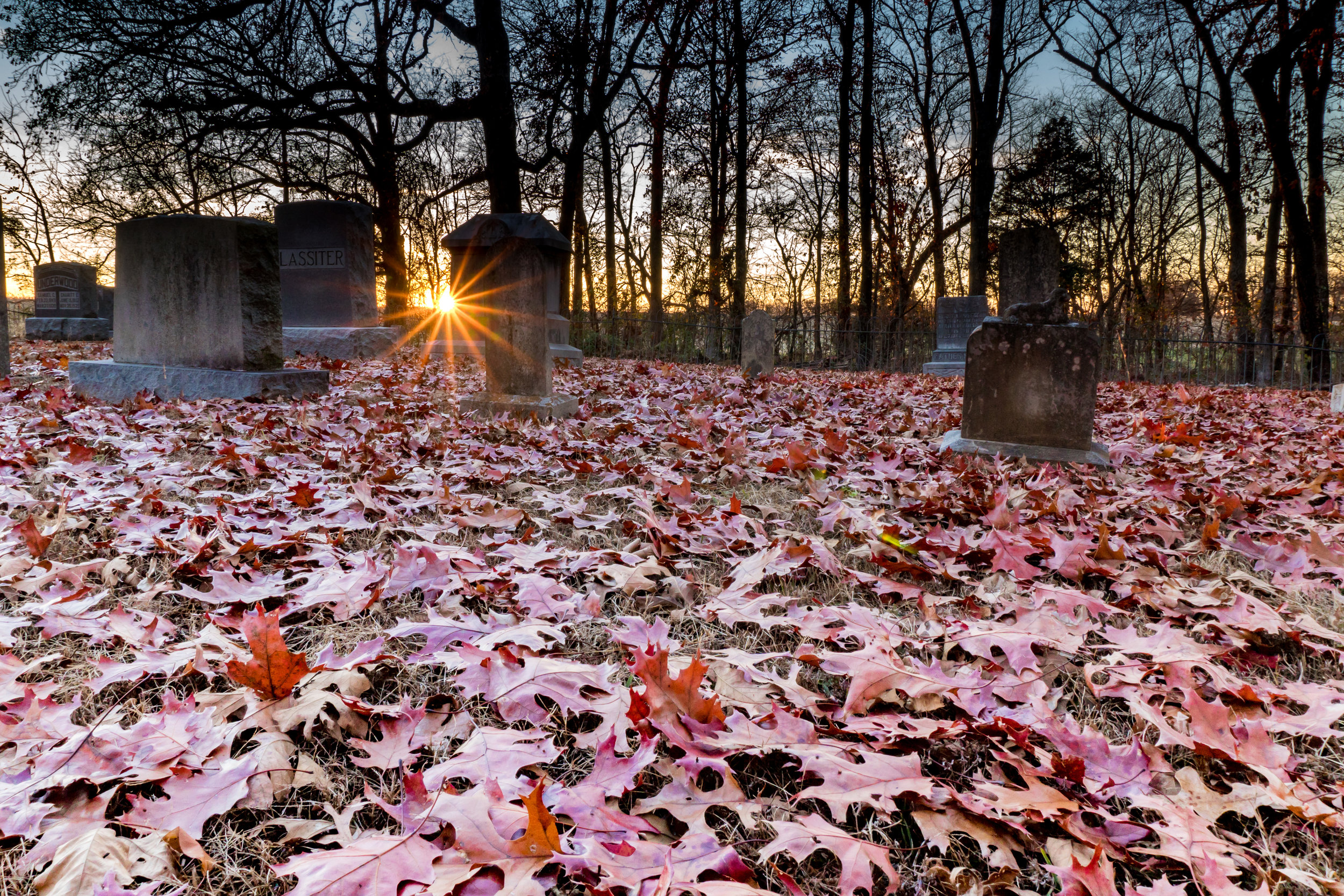 Sunset Graveyard.jpg