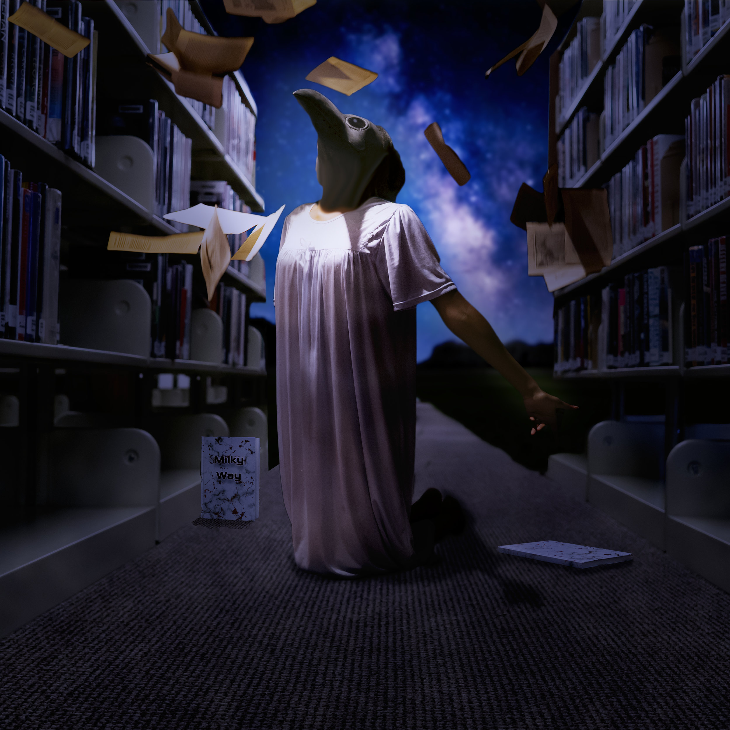 Nebula finds herself in a library, The library is all but destroyed and she is struggling to find something that will take here to a safe haven in the south….What will help?