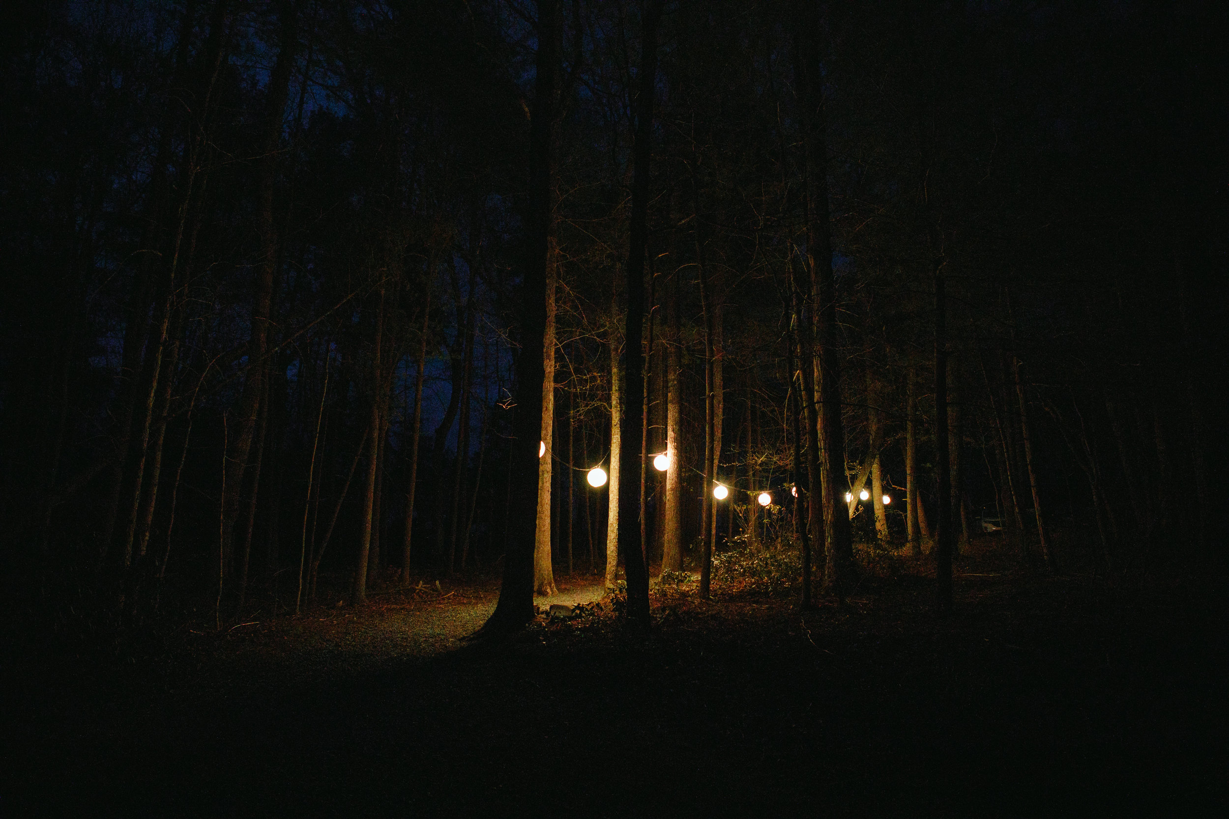 maine-camp-wedding-photographer