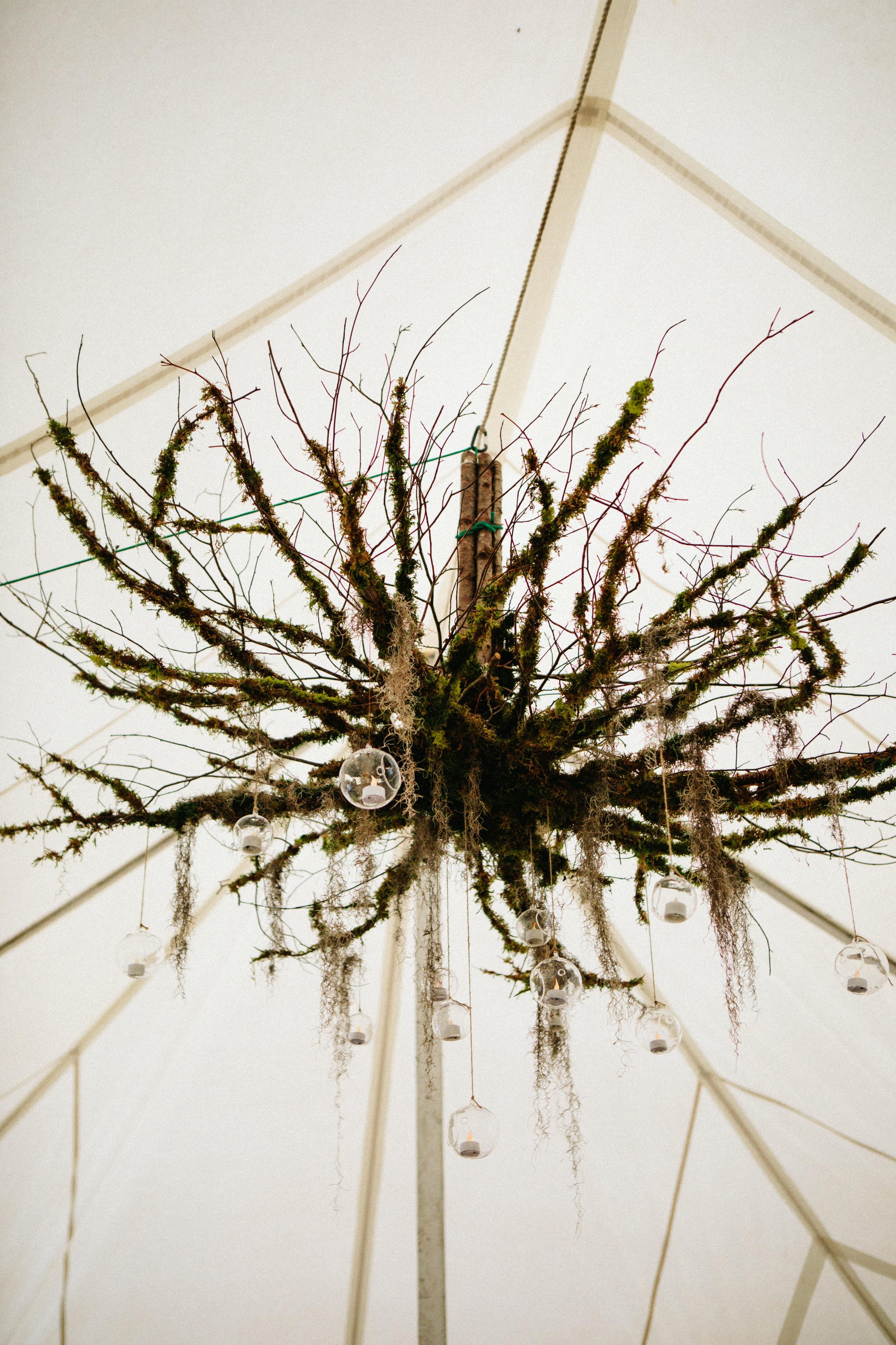 enchanted-forest-wedding-decor