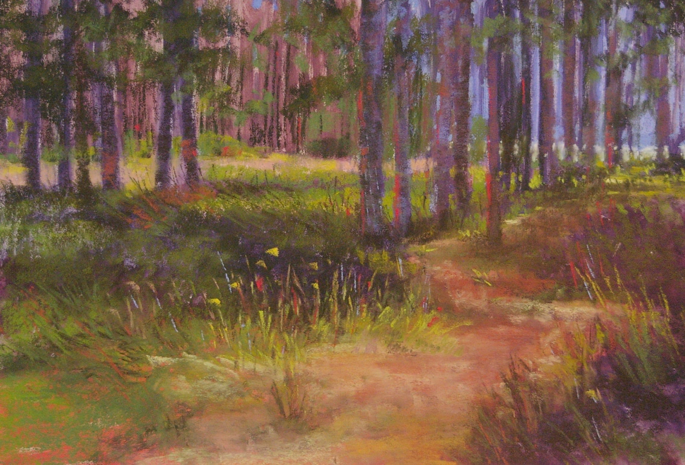 The Sunlit Path pastel on sanded paper 14 x 21 unframed $500