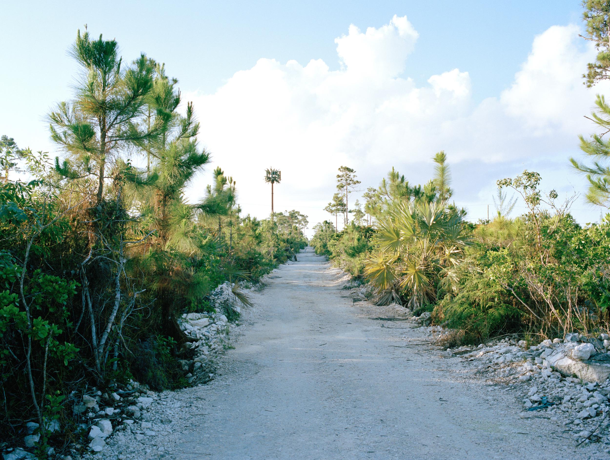 bahamas3-002.jpg