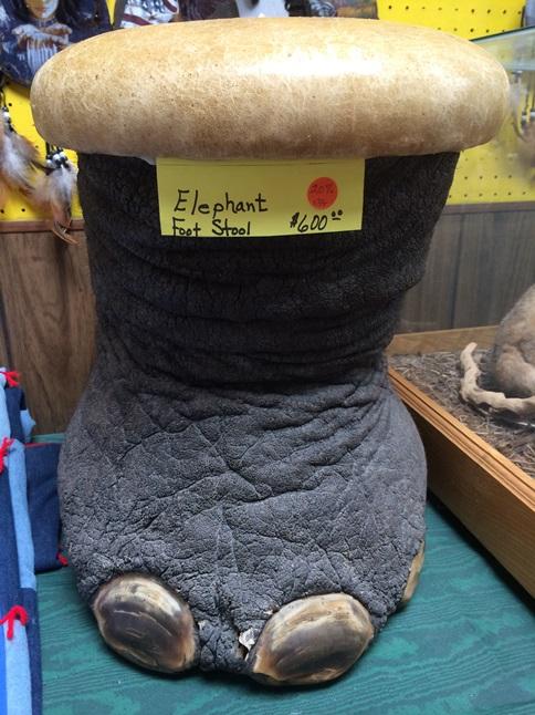 Elephant Foot Stool