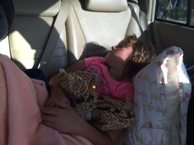 We woke early. Elle learned to get comfy in the car when she needed to.