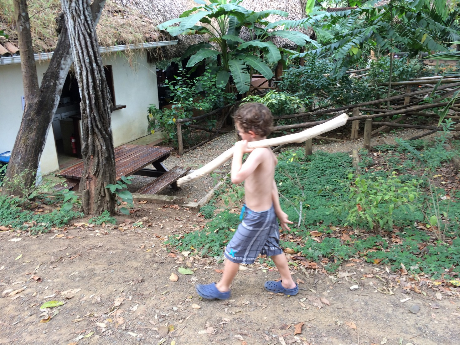 """Tag found this stick and decided he wanted to take it to the waterfall. About 3/4 of the way there he decided to put it down and leave it in the woods """"so the monkeys could play with it""""."""