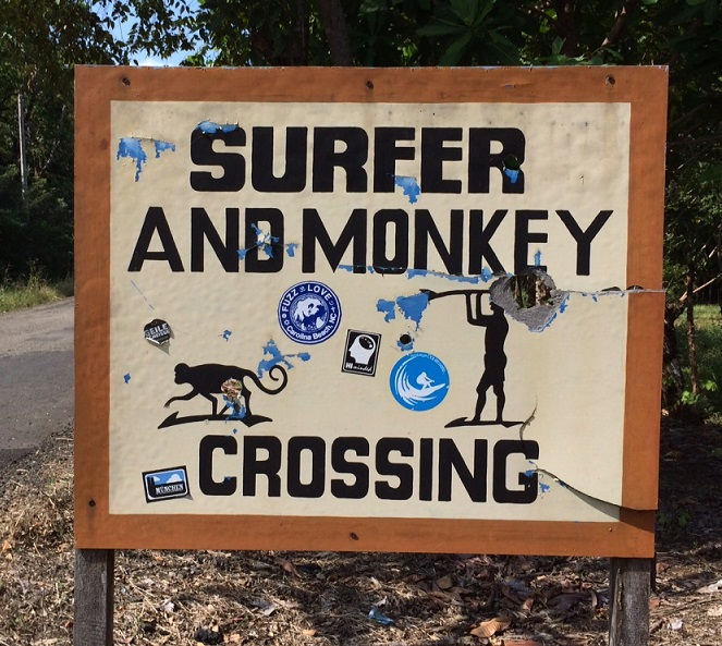 Surfer and Monkey crossing sign. We saw both on this road.