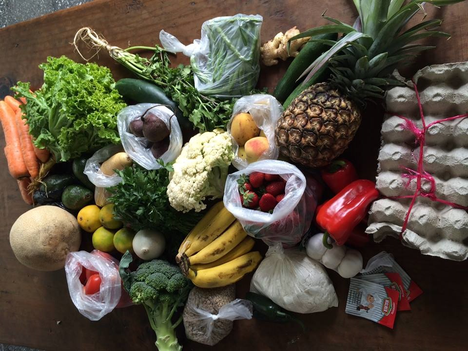 This $16 haul included ahead of broccoli, bunch of cilantro, bunch of celery, 3 cucumbers, 3 bell peppers, 8 huge carrots, 6 peaches, 4 potatoes, bunch of lettuce, 3 beets, 1 cantaloupe, 1 pineapple, 3 avocados, bunch of green beans, head of cauliflower, 4 lemons, 1 red onion, 1 white onion, 6 bananas, 1 ginger root, 11 tomatoes, bag of lentils, bag of flour, big bag of strawberries, 3 garlics, 2 jalapenos, 18 eggs, and some black pepper