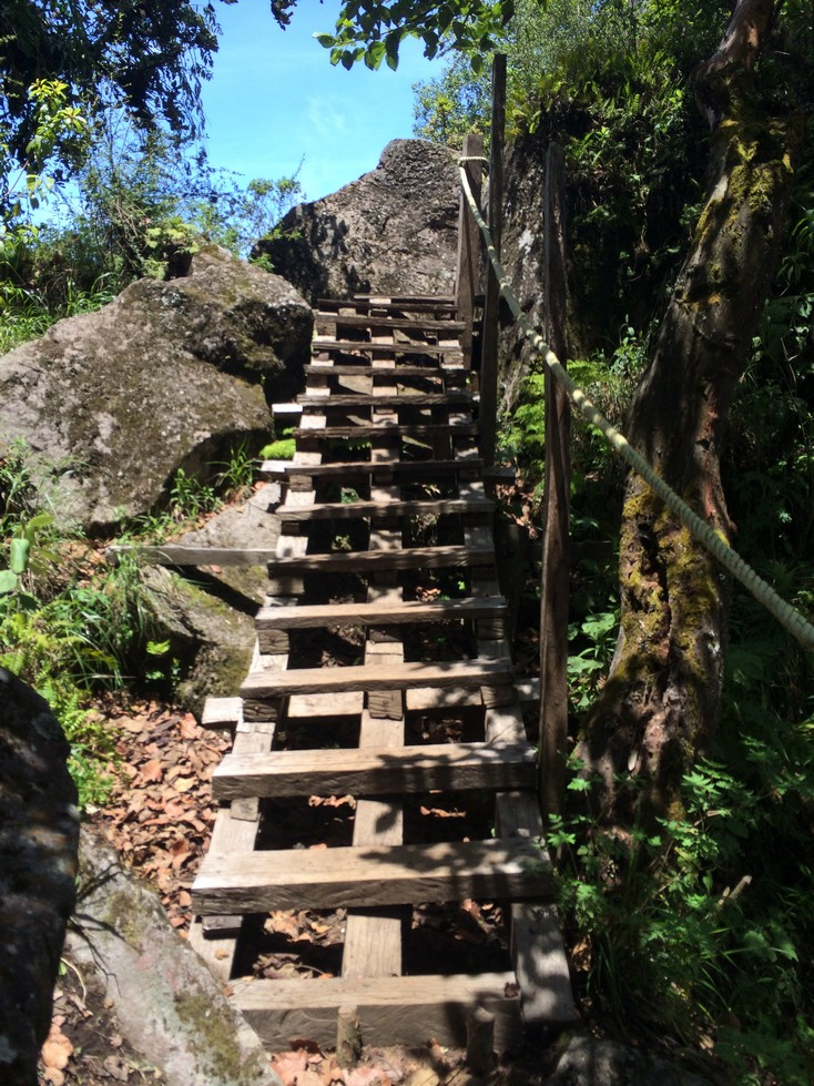 When you see this stairway, you're at the top!