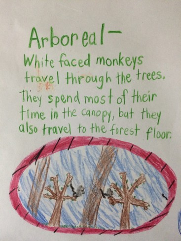 Arboreal, usually referencing animals, mean living in trees.