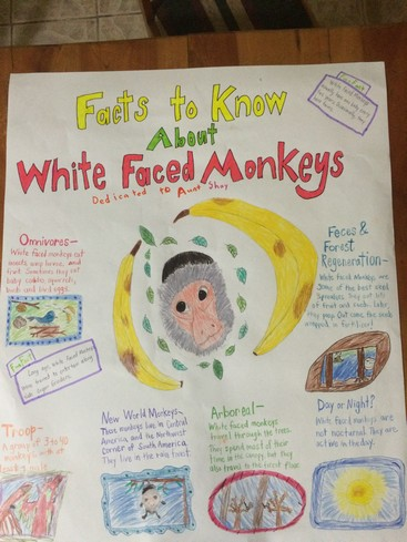 Our first homeschool poster. Don't strain your eyes. All the facts are below.