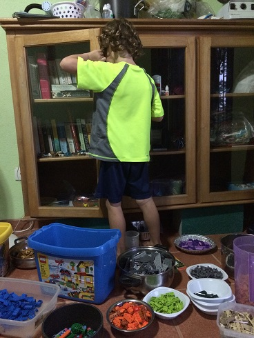 """Tag started putting his """"special"""" Chima characters in the bookcase behind the Legos. This drove me crazy. Every time he went into the bookcase, I waited to hear the sound of Lego containers emptying as he stepped on them."""