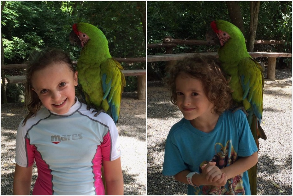 Kids and macaws!