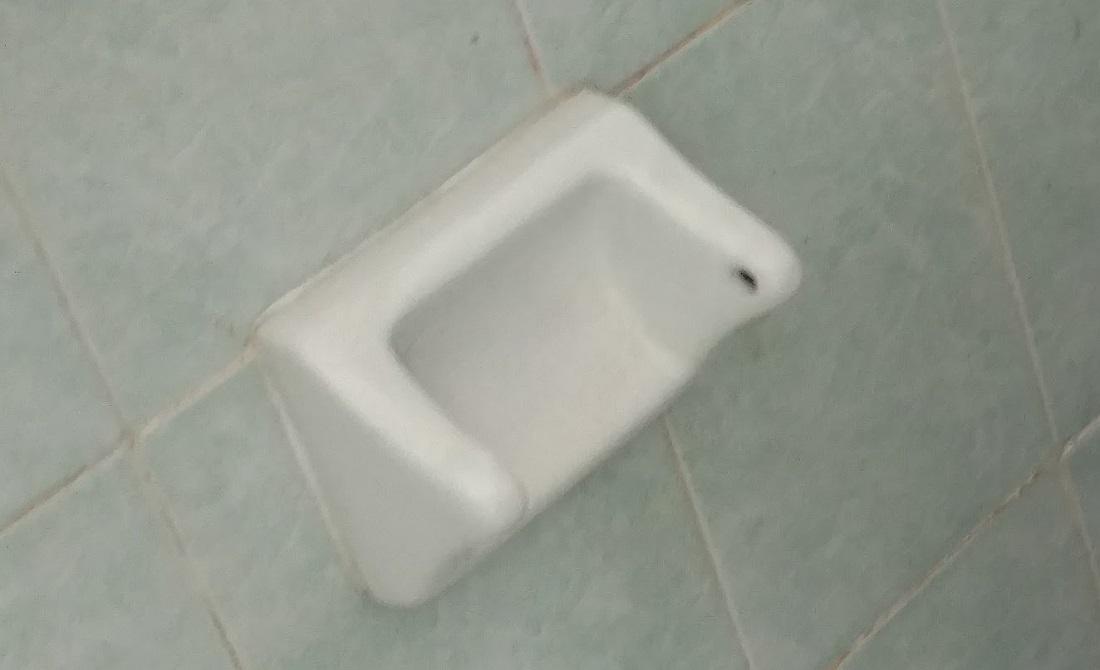 A common site...no toilet paper
