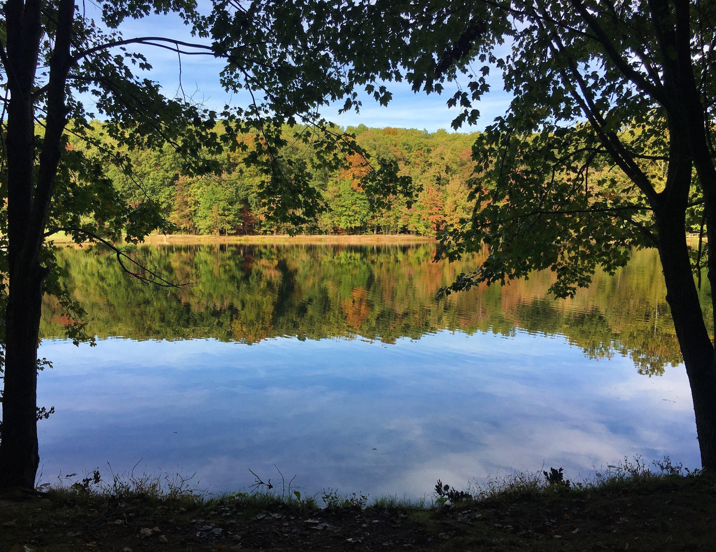 new fall views.